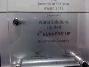 WANA WINNER as Investor of the Year 2012
